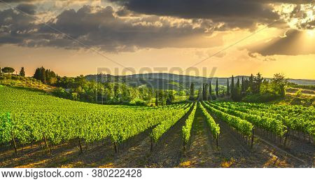 San Gimignano Medieval Town Towers Skyline And Vineyards Countryside Landscape Panorama On Sunrise.