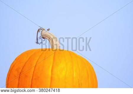 Half Of Orange Ripe Pumpkin With Green Stalk On Light Background, Close Up, Copy Space For Advertisi