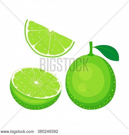 Set Of Whole And Slices Lime Isolated On White, Vector Illustration
