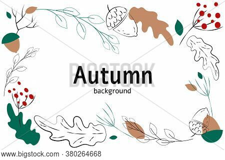 Frame Of Autumn Hand Drawn Images. Black Silhouttes On White Background. Isolated Leaves Of Acorn, B