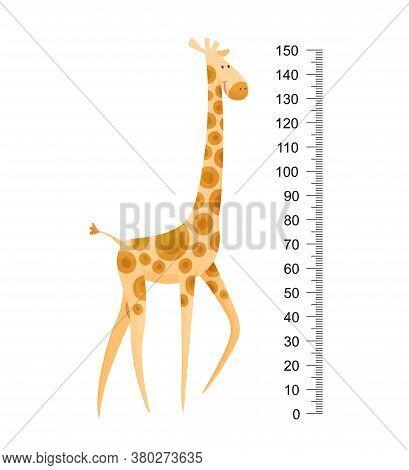 Funny Giraffe. Cheerful Funny Giraffe With Long Neck. Giraffe Meter Wall Or Height Chart Or Wall Sti