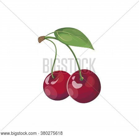 Sweet Two Red Cherry Berries On A Branch Isolated On White Background. Cherry Icon Element For Logo