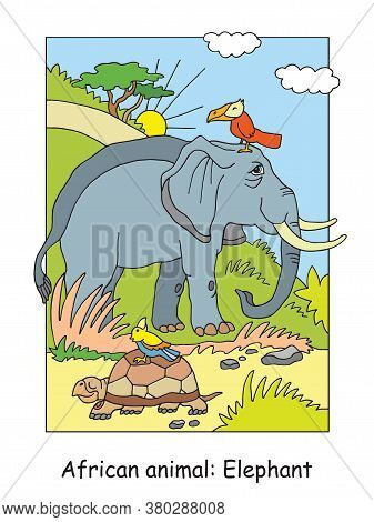 Vector Coloring Pages With Cute Elephant In African Area. Cartoon Isolated Colorful Illustration. St