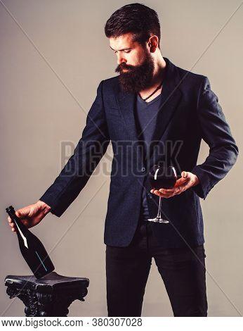 Sommelier Man, Degustator, Winery, Male Winemaker. Bottle, Red Wine Glass. Beard Man, Bearded, Somme