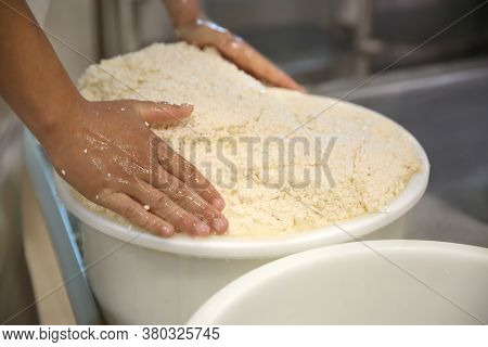Worker Pressing Curd Into Mould At Cheese Factory, Closeup