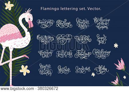 Summer Lettering Flamingo Vector Set. Summertime Calligraphy Quote Collection. Perfect For Girls Tsh