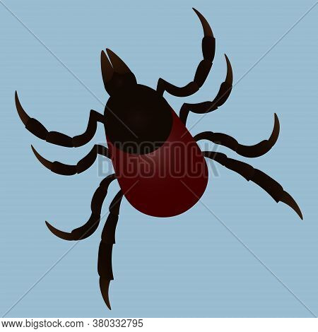 Mite Is An Insect. The Parasite Is Dangerous To Humans. Vector Illustration. Isolated Blue Backgroun