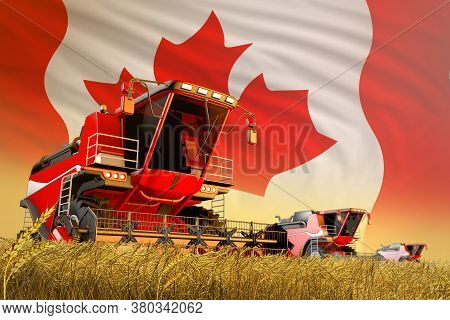 Agricultural Combine Harvester Working On Wheat Field With Canada Flag Background, Food Production C