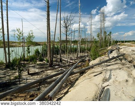 Deforestration. The Impact Of The Extractive Industry On The Environment. Destroyed Wood And Pipes.