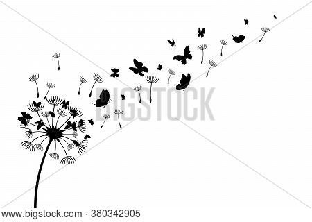 Dandelion With Flying Butterflies And Seeds. Vector Isolated Decoration Element From Scattered Silho