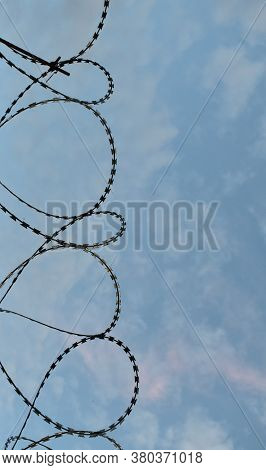 Protective Barbed Wire With Sharp Teeth, Vertically.