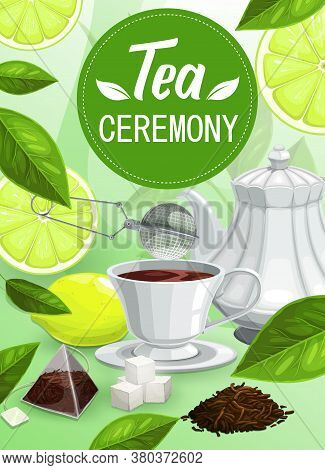 Tea Ceremony Vector Mug With Brown Beverage, Brew And Sugar, Lemon, Strainer, Dry And Green Leaves O
