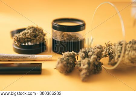 Sativa Thc Cbd. Cannabis Nature Bud. Marijuana Weed Bud And Grinder. Joint Weed. Indica Medical Heal