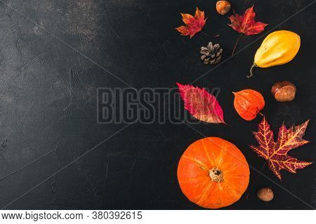 Autumn, Halloween Or Thanksgiving Composition Made Of Autumn Leaves, Flowers, Pumpkin On Black Backg