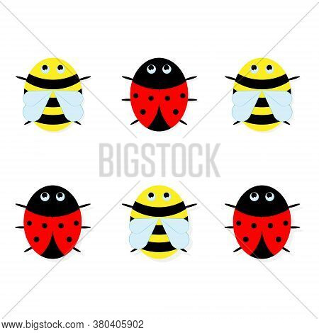 Drawing Of Bees And Ladybugs. Vector Ladybird