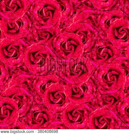 Texture Of A Seamless Flower Pattern. Delicate Roses. Decorative Design Elements