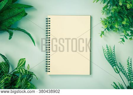 Spiral Notebook Or Spring Notebook In Unlined Type And Office Plants At Corner On Blue Pastel Minima