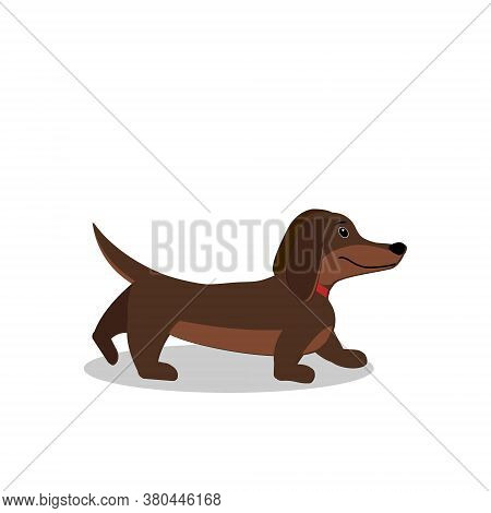 Character Dog Dachshund Isolated On A White Background, Flat Style, Clipart, Design, Decoration, Ban