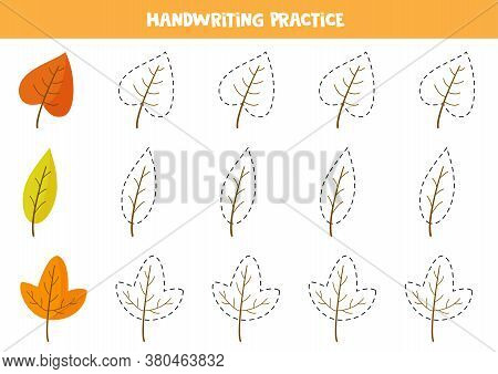 Trace Contours Of Autumn Leaves. Educational Worksheet.