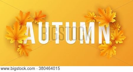 Seasonal Fall Banner With Maple Leaves On Orange Background. Festive Template For Design Your Advert