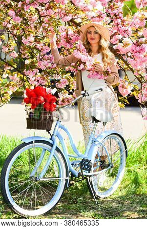 Cycling Tours. Experience Culture While Having Bike Ride Adventure. Excursion To Park. Cherry Tree B
