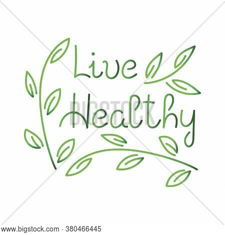 Beautiful Brush Lettering , Live Healthy. Hand Drawm Vector
