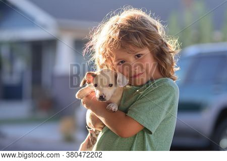 Little Boy Hugging A Dog. Happy Child And Dog Hugs Her With Tenderness Smiling. Kid Lovingly Embrace
