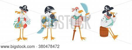 Set Of Funny Vector Pirate Characters. Seagulls In Sailor Costumes With Cocked Hats, Swords And Peg