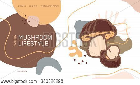 Mushroom Lifestyle Web Site Header Or Banner Vector Template. Modern Abstract Organic Shapes, Porcin
