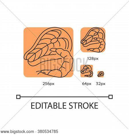 Seafood Orange Linear Icons Set. Tuna Raw Steak. Fresh Shrimp. Mediterranean Cuisine. Thin Line Cust