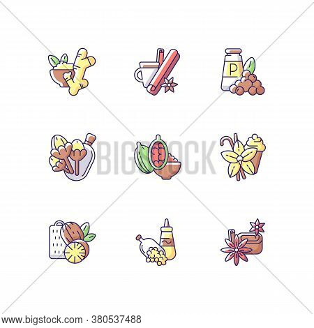 Culinary Herbs And Rgb Color Icons Set. Aromatic Flavoring. Asian Seasonings. Nutmeg And Cinnamon. G