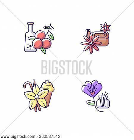 Rgb Color Icons Set. Aromatic Flavoring. Food Seasoning. Cooking Condiment. Juniper. Star Anise And