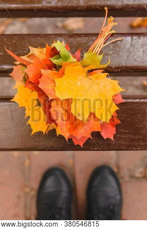Overhead View Of Bouquet Of Yellow Maple Leaves On City Park Bench
