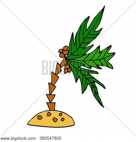 Cartoon Doodle Coconut Palm On The Little Island Isolated On White Background. Tropic Plant In Child
