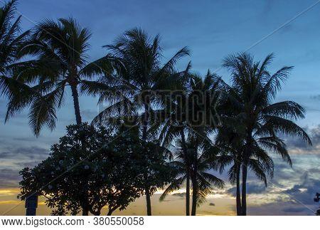Sunset At Waikiki A Part Of Honolulu Hawaii, Usa