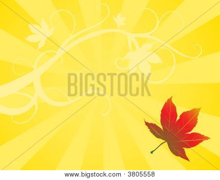 Yellow Maple Background
