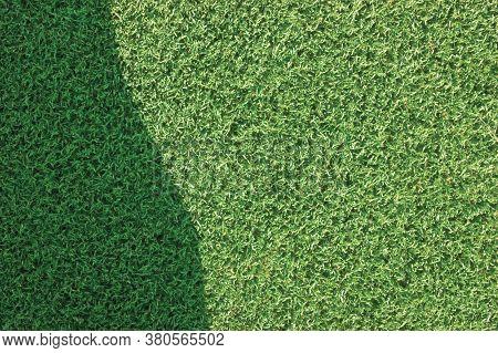 Artificial Grass Fake Turf Synthetic Lawn Field Macro Closeup, Gentle Shaded Shadow Area, Green Spor