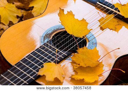Classical guitar and strings
