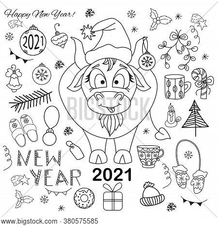 Bull 2021. Symbol Of The Year. Chinese New Year. A Cute Bull In New Years Clothes And A Christmas Ba