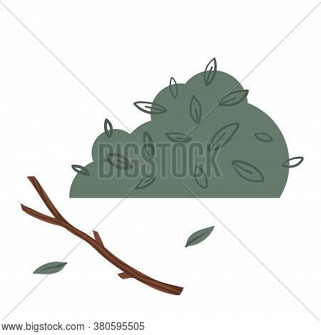 Green Bush, Thickets. Branch And Leaves. Vector Illustration.