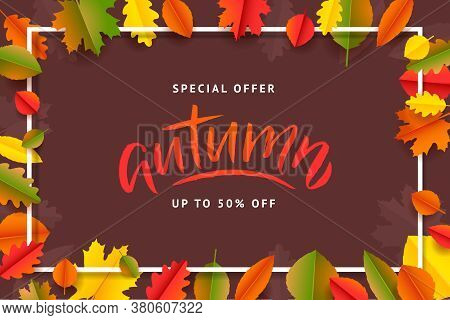 Autumn Fall Season Sale Banner. Colorful Fall Leaves And Advertising Discount Text. Vector Backgroun