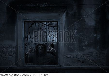 Human Skull In Jacket Standing In Old Damaged Window With Wall Over Cross, Church, Birds, Dead Tree