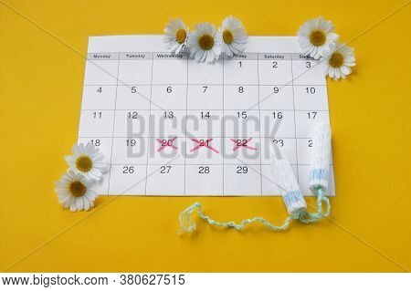 Menstrual Tampons On Menstruation Period Calendar With Chamomiles On Yellow Background. The Concept