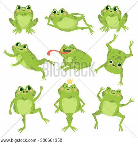 Cute Frogs. Green Funny Frogs In Various Poses, Happy Animals Group. Smiling Active Toads, Zoo Carni