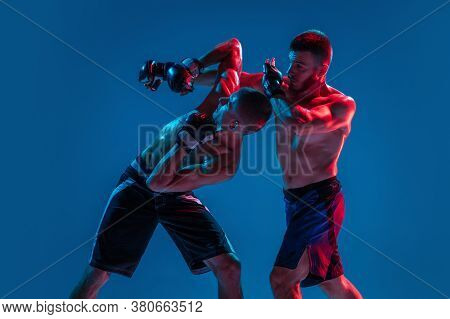 Tensioned. Mma. Two Professional Fighters Punching Or Boxing Isolated On Blue Studio Background In N