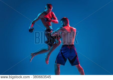 In Flight. Mma. Two Professional Fighters Punching Or Boxing Isolated On Blue Studio Background In N