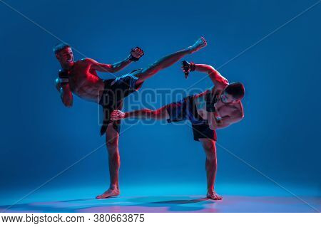 Muscular. Mma. Two Professional Fighters Punching Or Boxing Isolated On Blue Studio Background In Ne