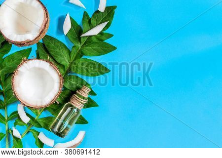 Cosmetic Bottle With Coconut Oil, Butter, Green Palm Leaf Are On Left Side Of Blue Background. Summe