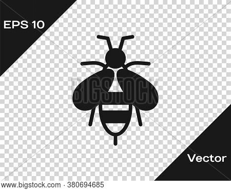 Black Bee Icon Isolated On Transparent Background. Sweet Natural Food. Honeybee Or Apis With Wings S