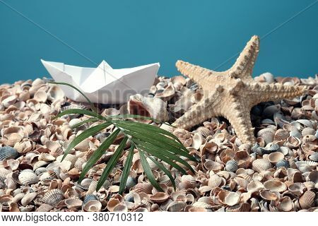Paper Boat On A Placer Of Shells, Starfish